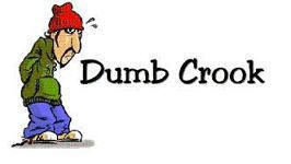 Dumb Crook